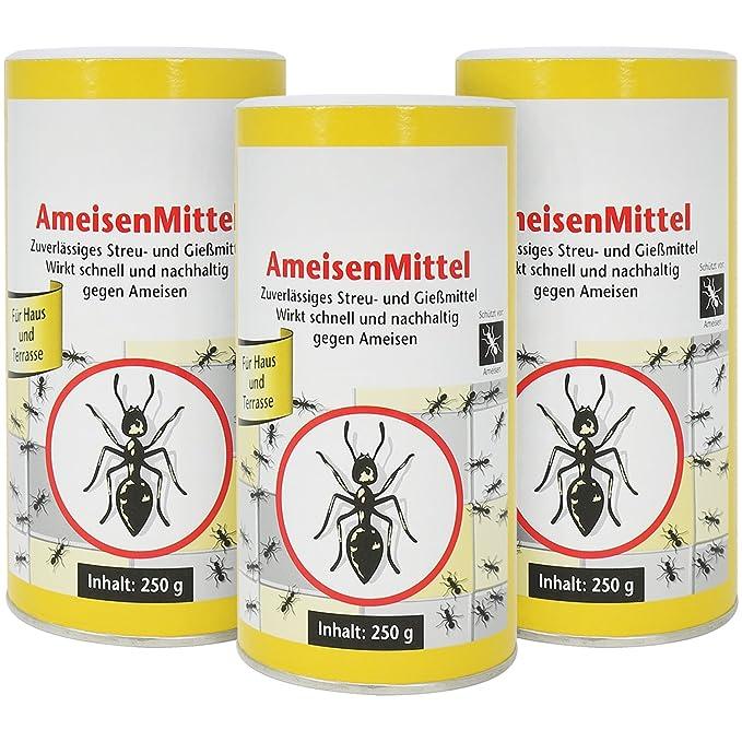 Ameisen Gift