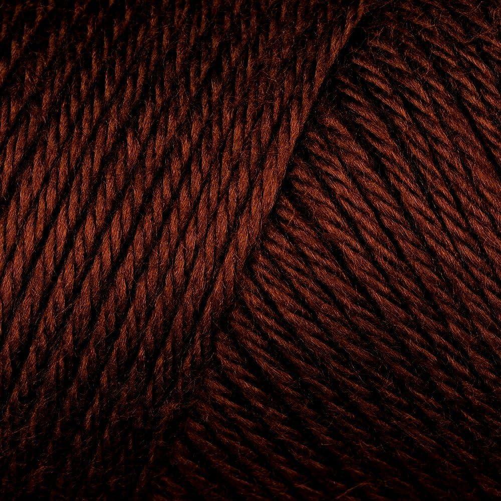 Caron Simply Soft Yarn Solids 2-pack Soft Pink Bulk Buy