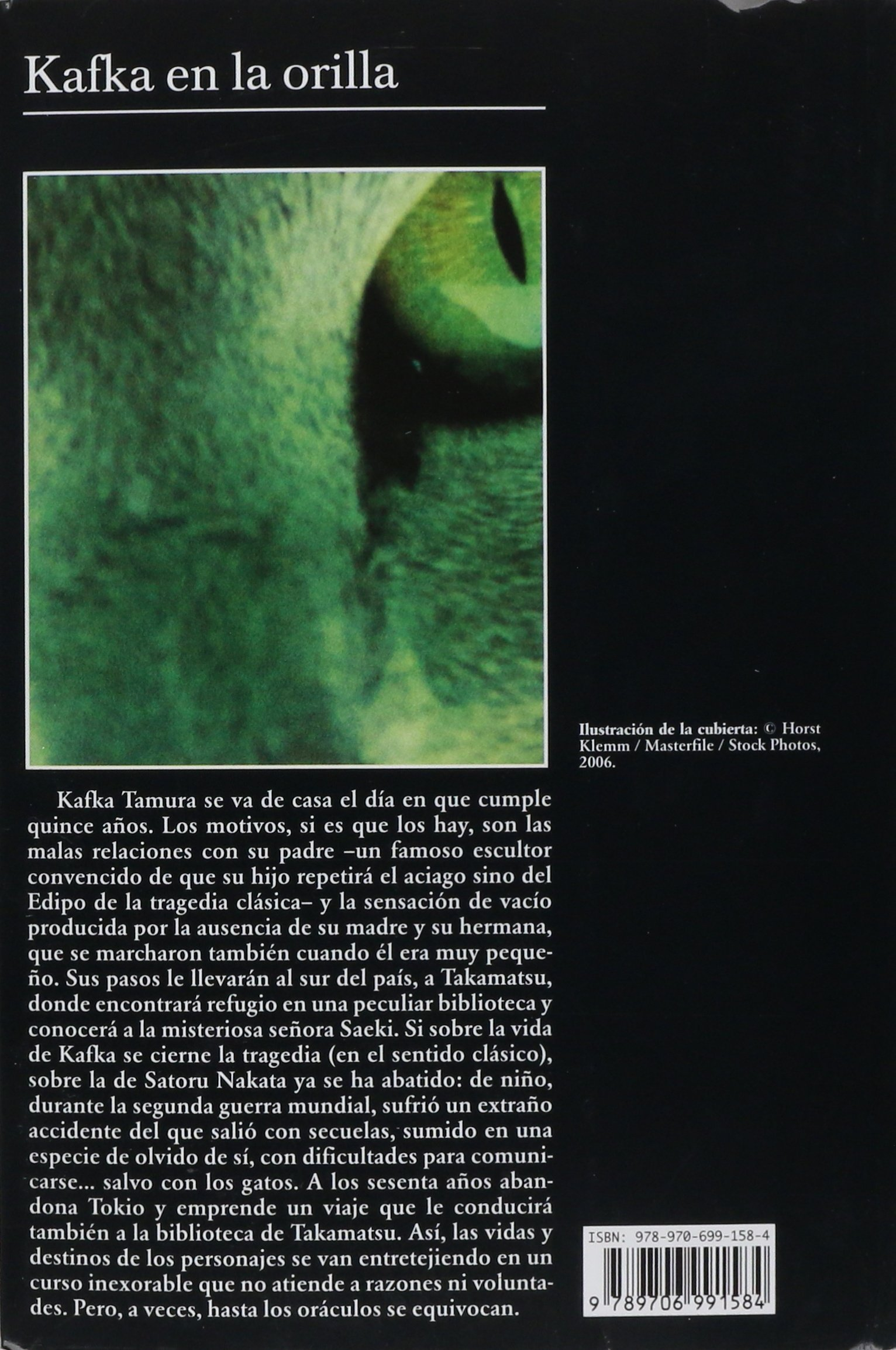 Kafka en la orilla (Spanish Edition): Haruki Murakami: 9789706991584: Amazon.com: Books