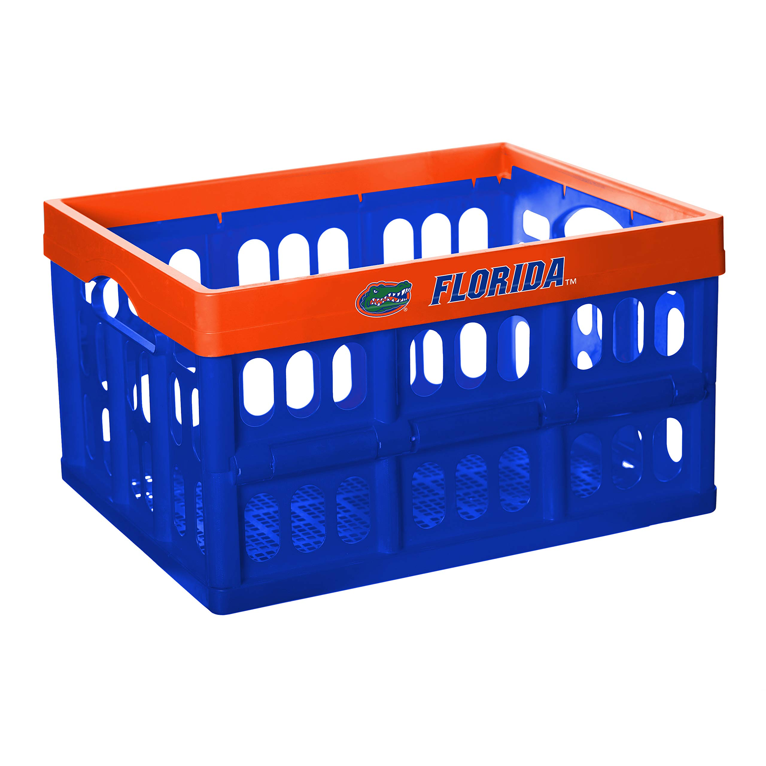 NCAA Fabrique Innovations Collapsible Crate, Florida Gators