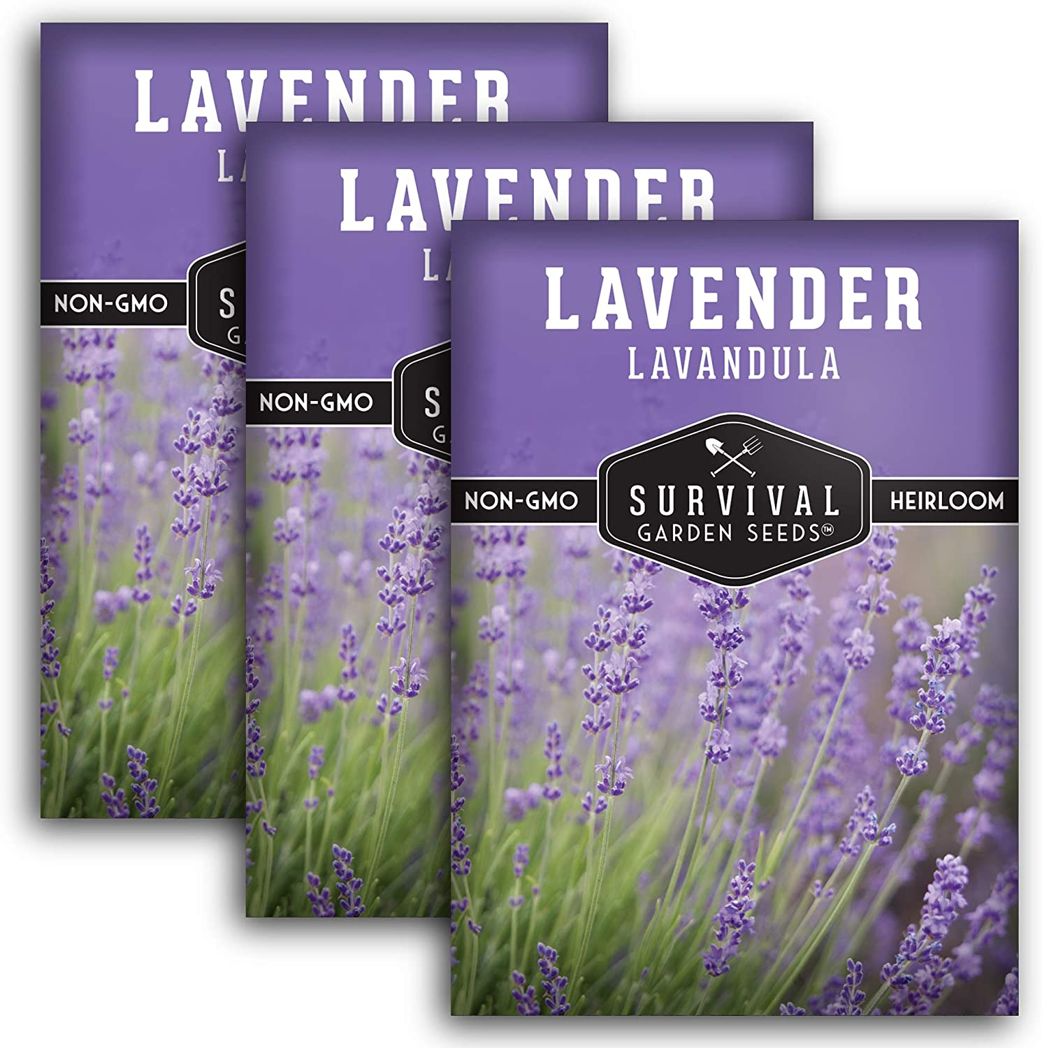Survival Garden Seeds - Lavender Seed for Planting - 3 Packets with Instructions to Plant and Grow in Your Home Vegetable Garden - Non-GMO Heirloom Variety