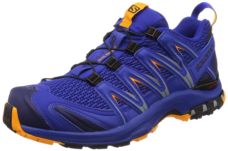 Bleu (Surf The Web Medieval bleu Bright M) 44 EU SALOMON XA Pro 3D, Chaussures de Trail Homme