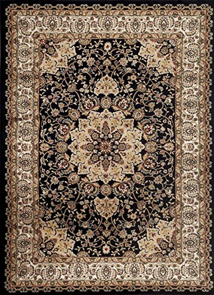Persian Rugs 1004 Black 5x7 5u00272 X 7u00272 Multi Variation Oriental