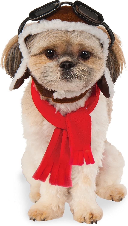 Sombreros gorras para perros