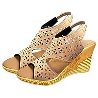 Ziaula Women's Suede Wedges Heel Sandal