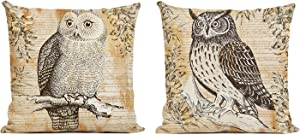 ArtKisser Owl Pillowcases Linen Cotton Animal Throw Pillow Covers Owl Bird Decorative Square Pillow Covers 18x18 Zipper Farmhouse Owl Cushion Pillow Covers Decors for Sofa Bedroom Living Room,Set of 2