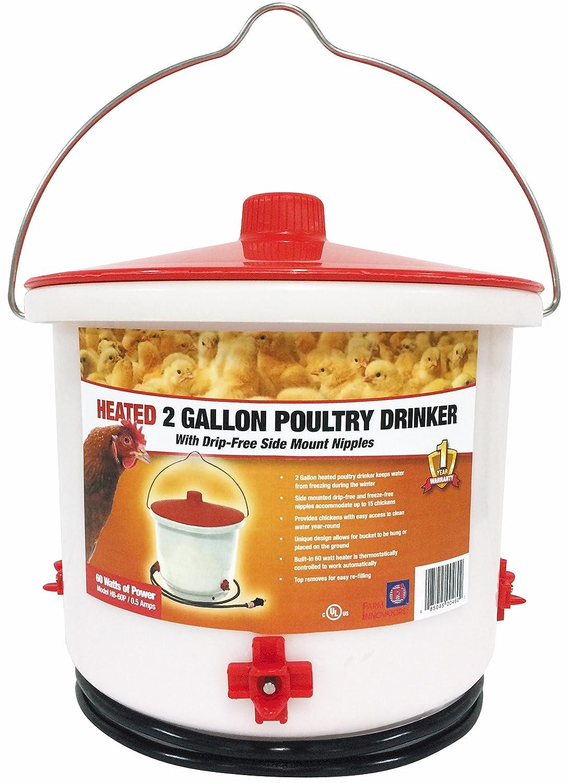 Farm Innovators HB-60P Heated 2 gallon Poultry Drinker Farm Innovators Pet Products
