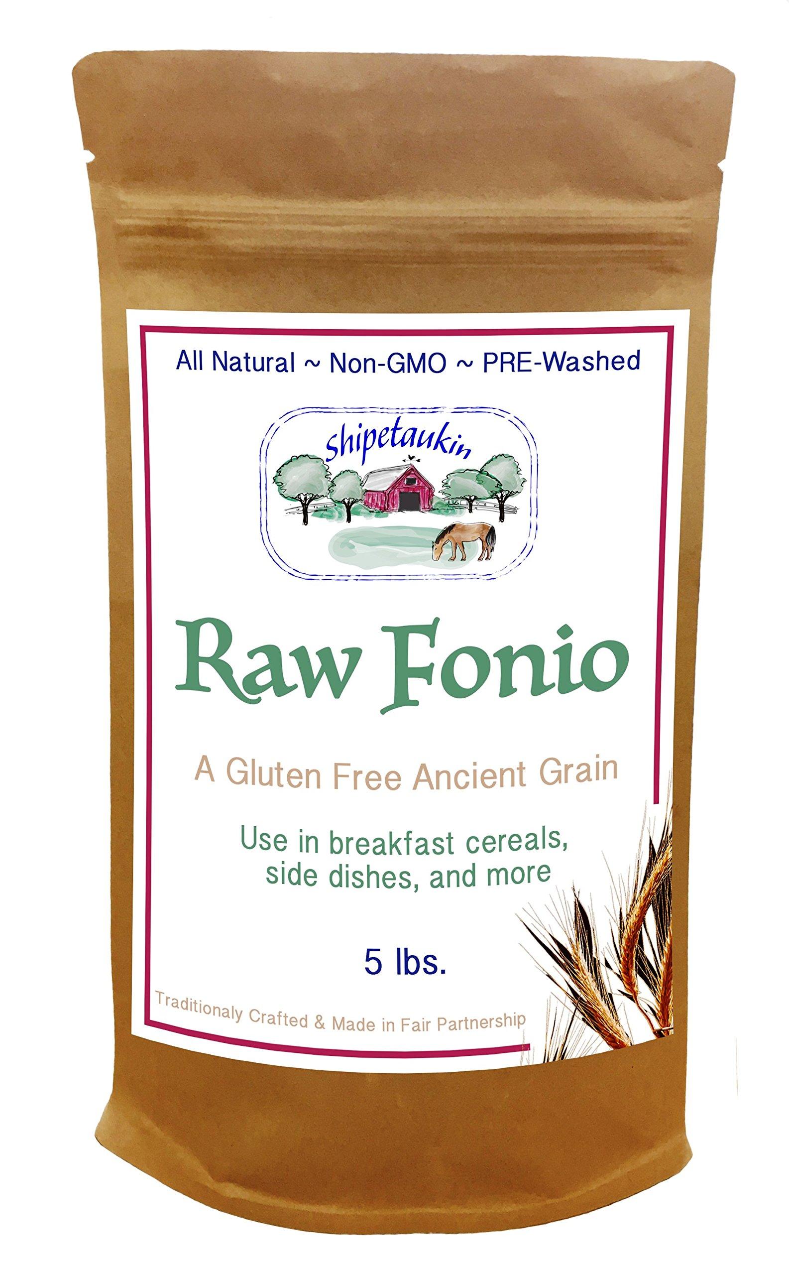Shipetaukin Raw Fonio Gluten Free Ancient African Grain, 5 Lbs.