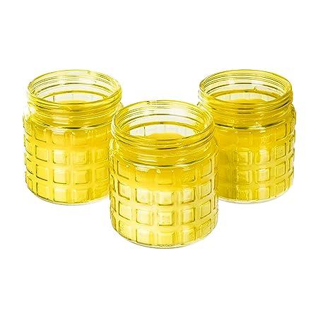 3 Citronella Duftkerzen im großen dekorativen Glas zur Mückenabwehr, 24 Stunden Brenndauer, Glas Ø 10 cm, Höhe 12 cm Windlich