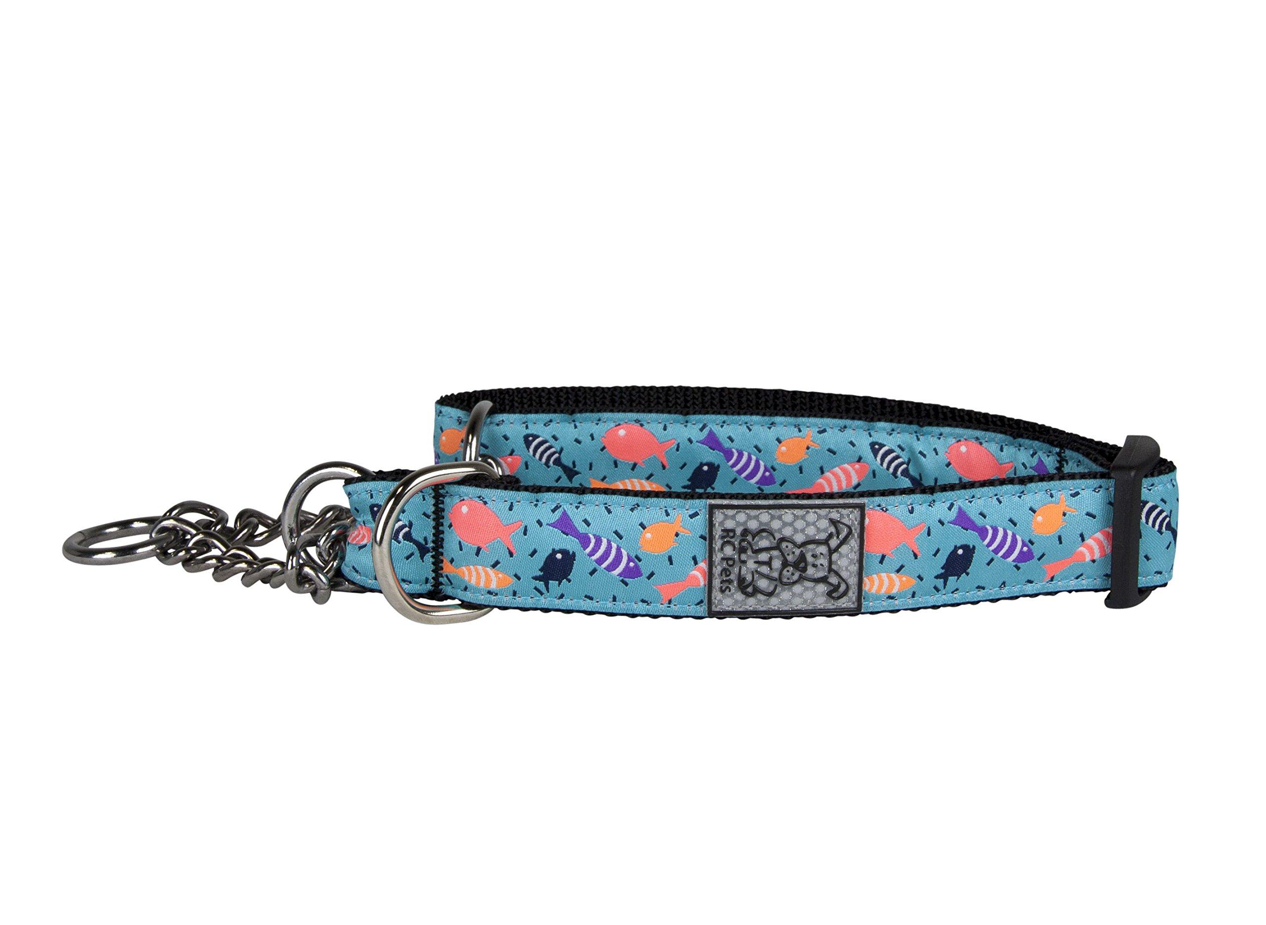 RC Pet Products 1'' Training Martingale Dog Collar, Shoal, Large