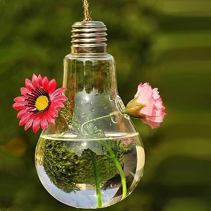 Amazon.com & Hanging Glass Flower Plant Vase Home Garden Decor Fashion Bulb Design