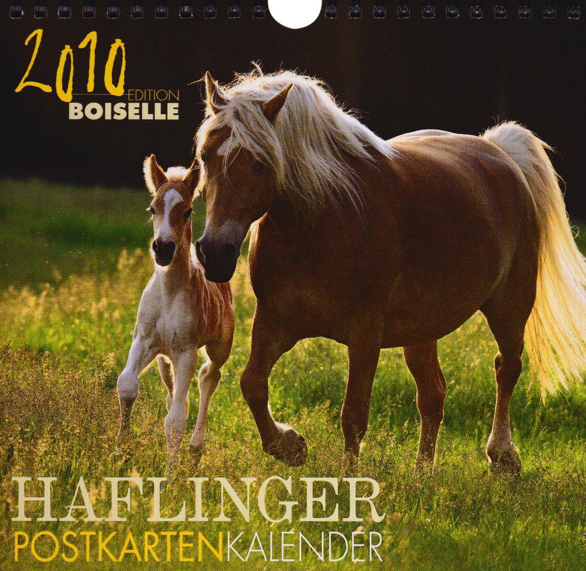 Haflingerpostkartenkalender 2010