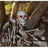 HW09761 - Producto de decoración de Halloween