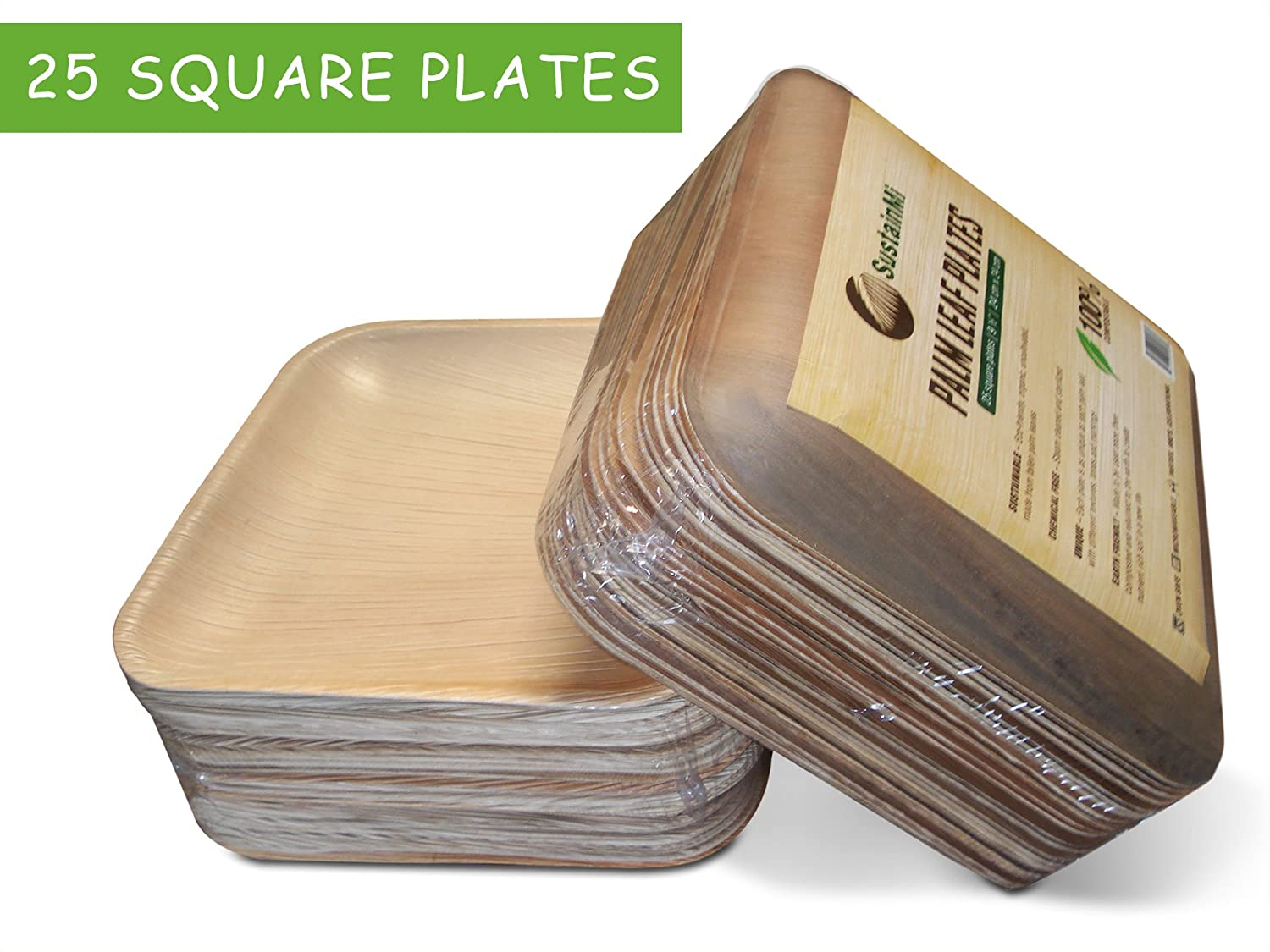 Amazon.com Disposable Eco-Friendly Palm Leaf Dinner Party Plates by SustainMi | Compostable Biodegradeable | 25 Pack 10 Inch | Heavy Duty and 100% Natural ...  sc 1 st  Amazon.com & Amazon.com: Disposable Eco-Friendly Palm Leaf Dinner Party Plates by ...