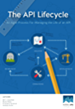 The API Lifecycle: An Agile Process for Managing the Life of an API (English Edition)