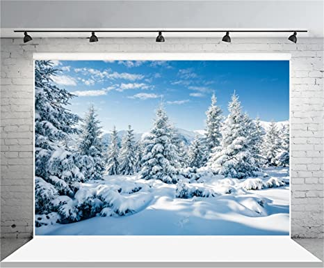 Super Amazon.com : Leyiyi 10x8ft Photography Background Snow Covered PY34