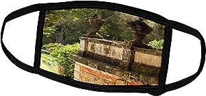 3dRose Danita Delimont - Plants - Florida, Coconut Grove, Vizcaya Museum and Gardens. - Face Masks (fm_209939_2)