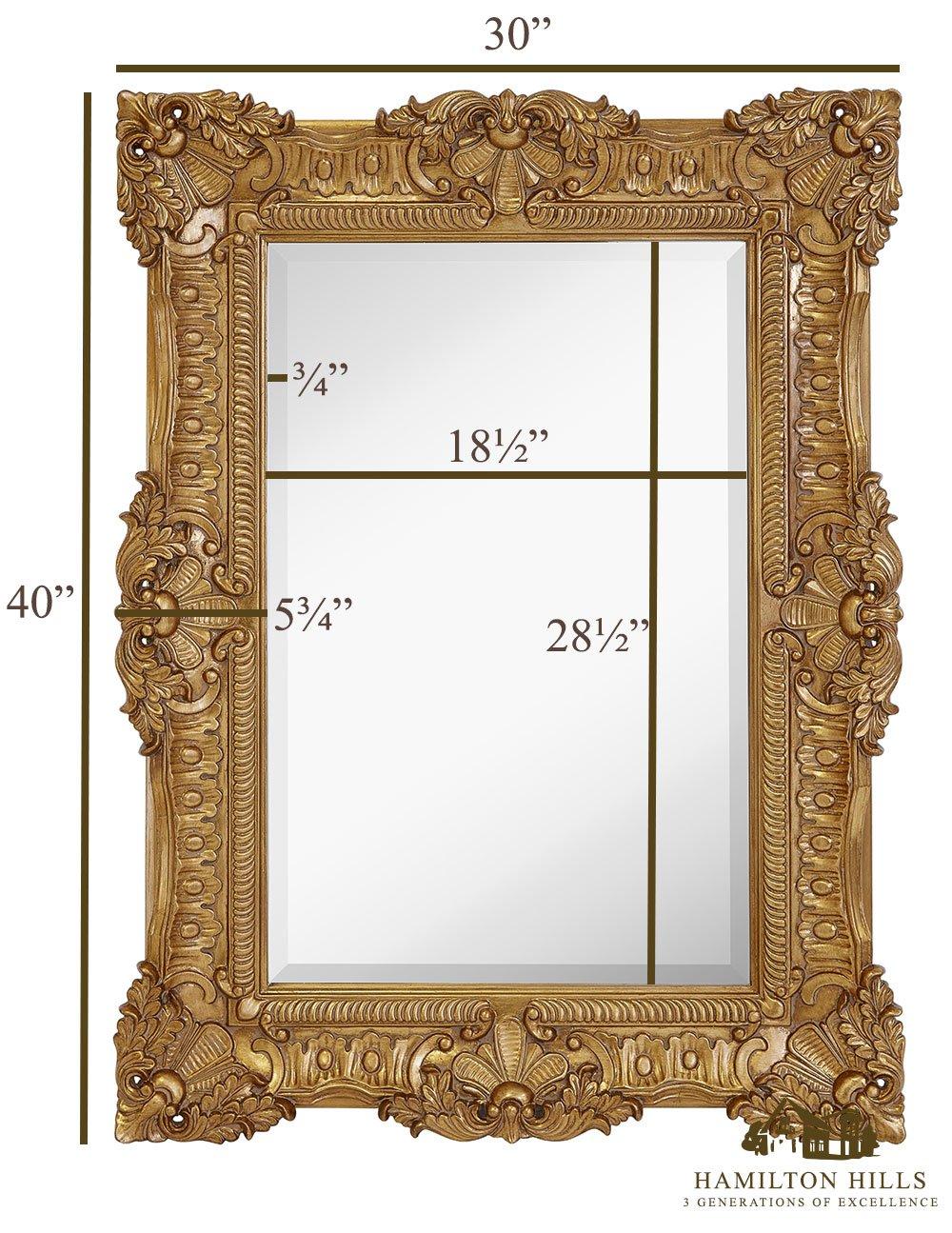 Amazon.com: Hamilton Hills Large Ornate Gold Baroque Frame Mirror ...