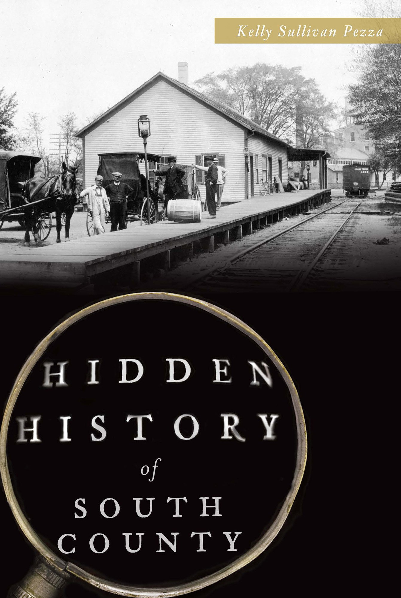 Download Hidden History of South County pdf