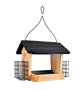 Nature's Way CWF28 Cedar 3 Quart Hopper Bird Feeder with Suet, 10 x 25.5 x 18