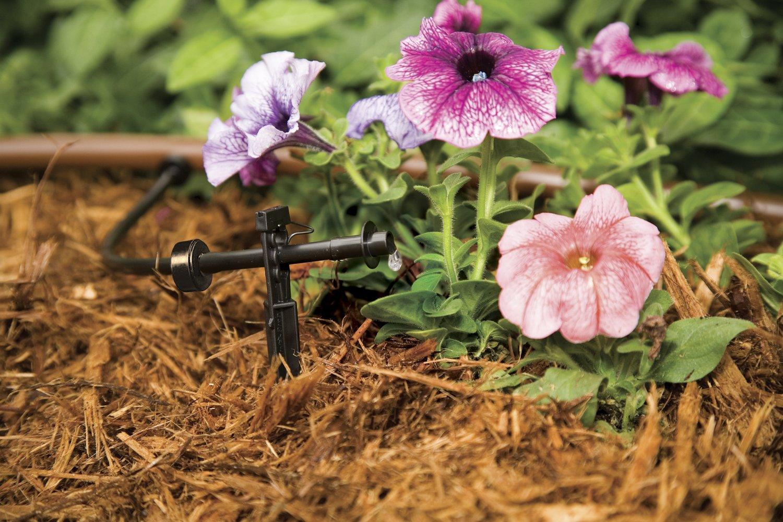 Rain Bird SW10-30PS Drip Irrigation Spot Watering Dripper//Emitter 30-Pack 1 Gallon Per Hour