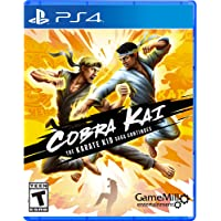 Cobra Kai The Karate Kid Saga Continues PlayStation 4