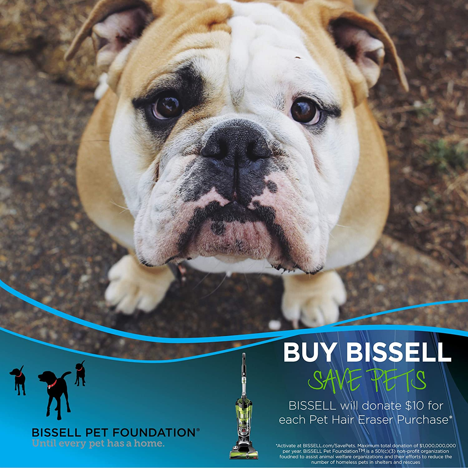 Bissell Pet Hair Eraser 1650A Upright Vacuum with Tangle Free Brushroll BISSELL Homecare Inc.