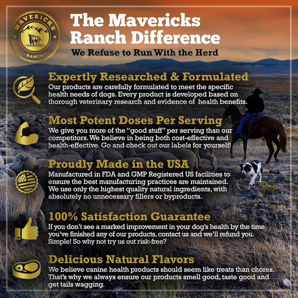 Mavericks Ranch Hip and Joint Supplement For Dogs | Best Canine Glucosamine Chondroitin, MSM & Vitamins C & E | 30-120 Day Support | 100% Natural & Made In USA | FDA | Chews Treats