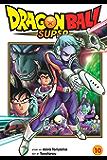 Dragon Ball Super, Vol. 10: Moro's Wish