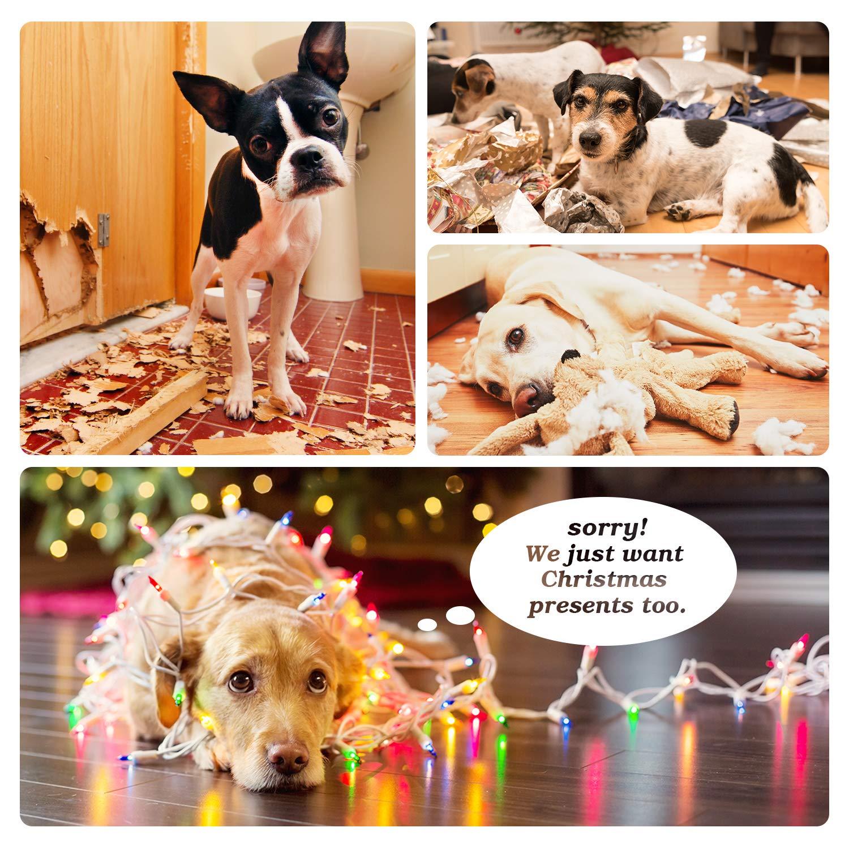 Pecute Juguetes de Cuerda para Perros 6 Piezascon Sonido Cuerda de Mordida para la Masticación Entrenamiento y la Limpieza de Dentición para Perros Pequeños yMedianos