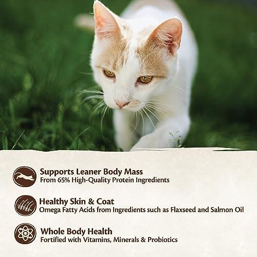 Wellness Core Grain-Free Original Formula Dry Cat Food, 2 Pound Bag