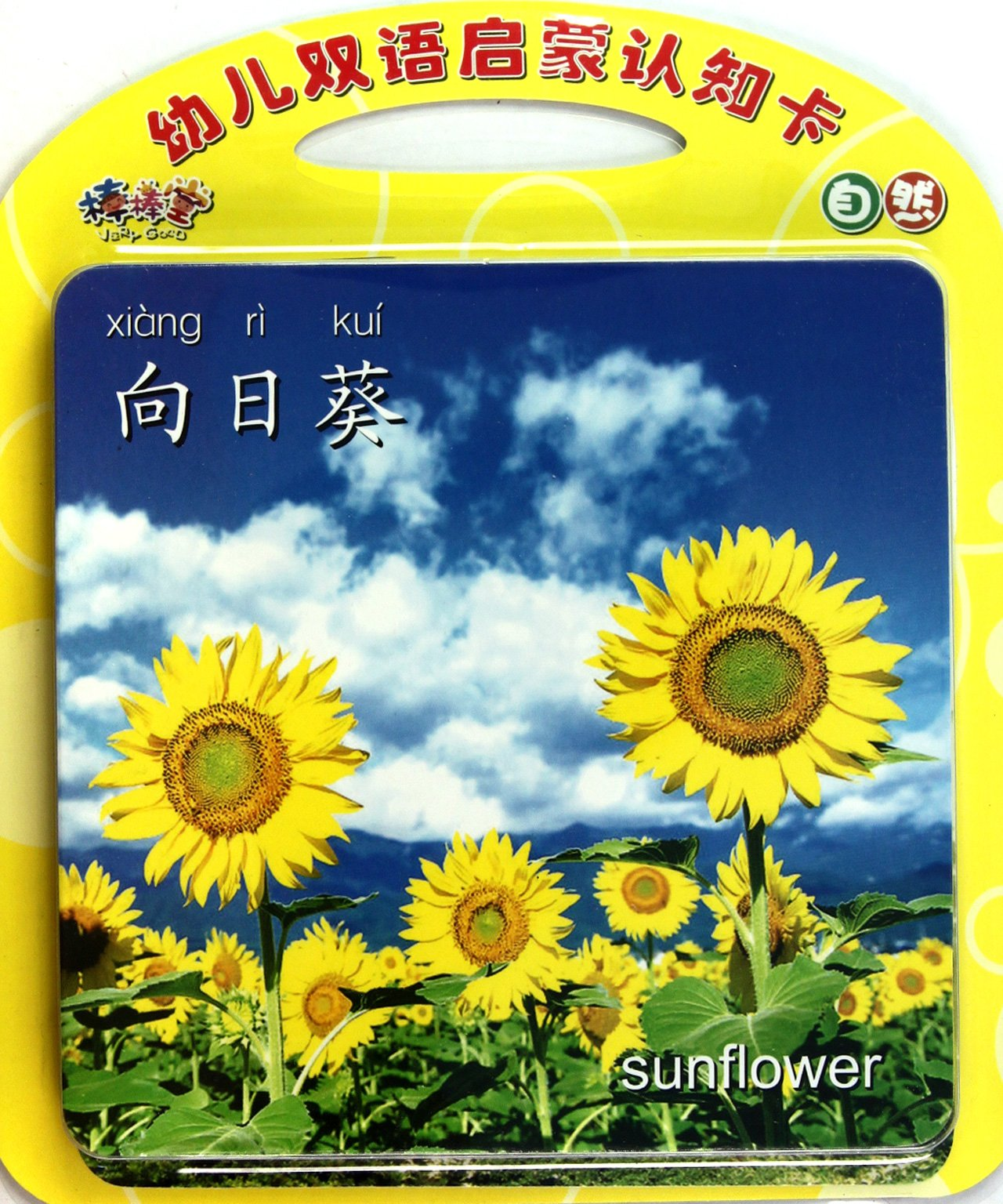 Nature: Baby's Bilingual Fact Cards (Chinese Edition) pdf