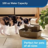 PetSafe Drinkwell Multi-Tier Cat and Dog Water