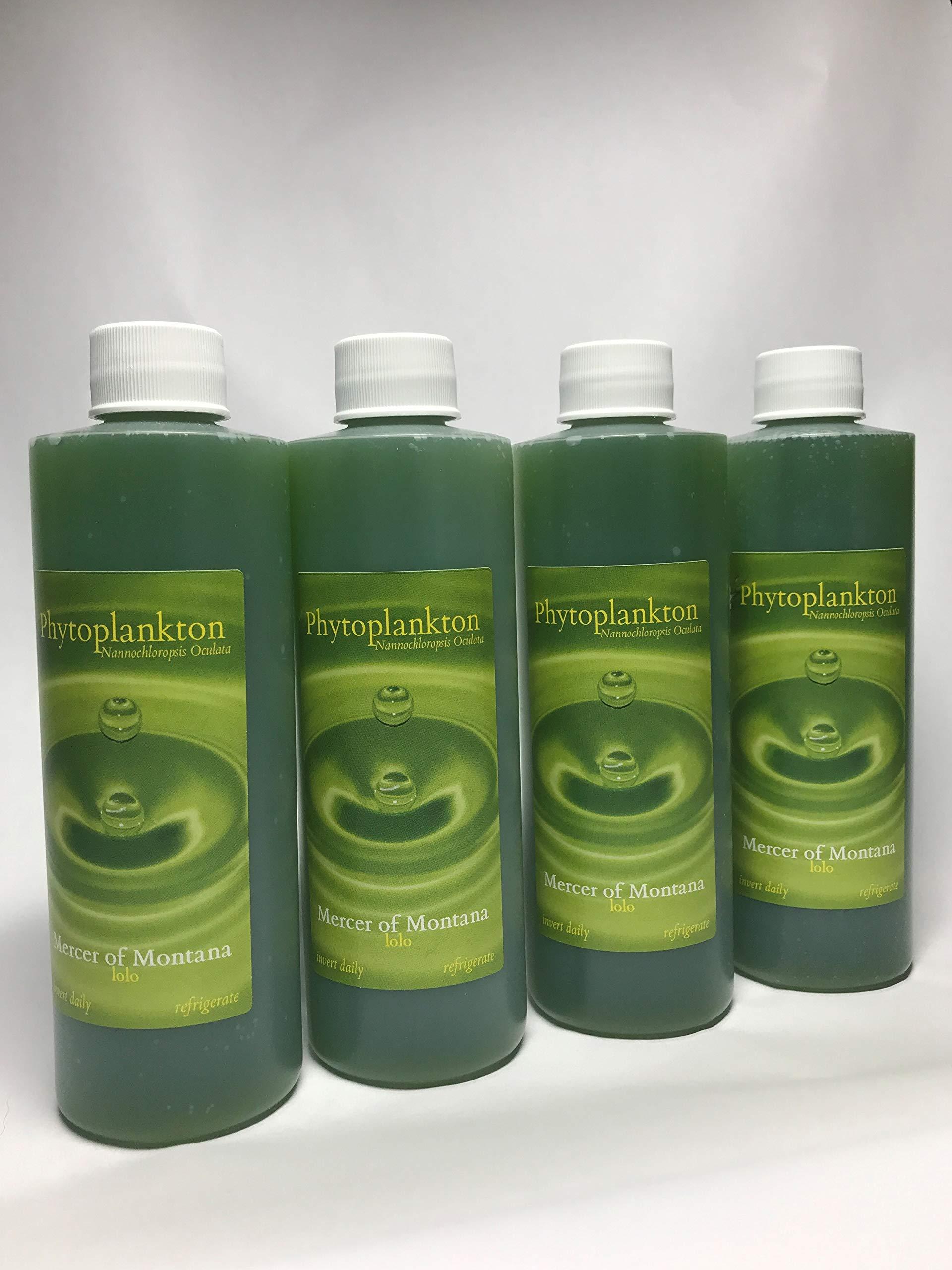 Live Marine Phytoplankton - (x4) 8oz Bottles