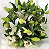 Stunning Birthday Flowers - White Oriental Lily Fresh Flower Bouquet - Flowers Delivered Next Day UK FREE 7 Days a Week - Send a Lovely Large Bunch of Scented Lilies Perfect Arrangement for Birthday or Anniversary Present