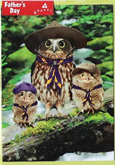amazon com owl scout leader funny father s day card health