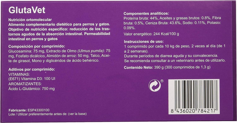 Stangest Glutavet 300 Comp 1 Unidad 300 g: Amazon.es ...