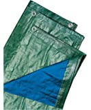 Ettore Biacchi 54073 wellenshop Blu, 4 x 6, con ollaos, 100 G, verde