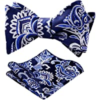 Alizeal Mens Novelty Paisley Bow Tie and Pocket Square Set