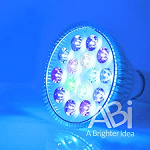 ABI Tuna Blue LED Bulb Coral Reef