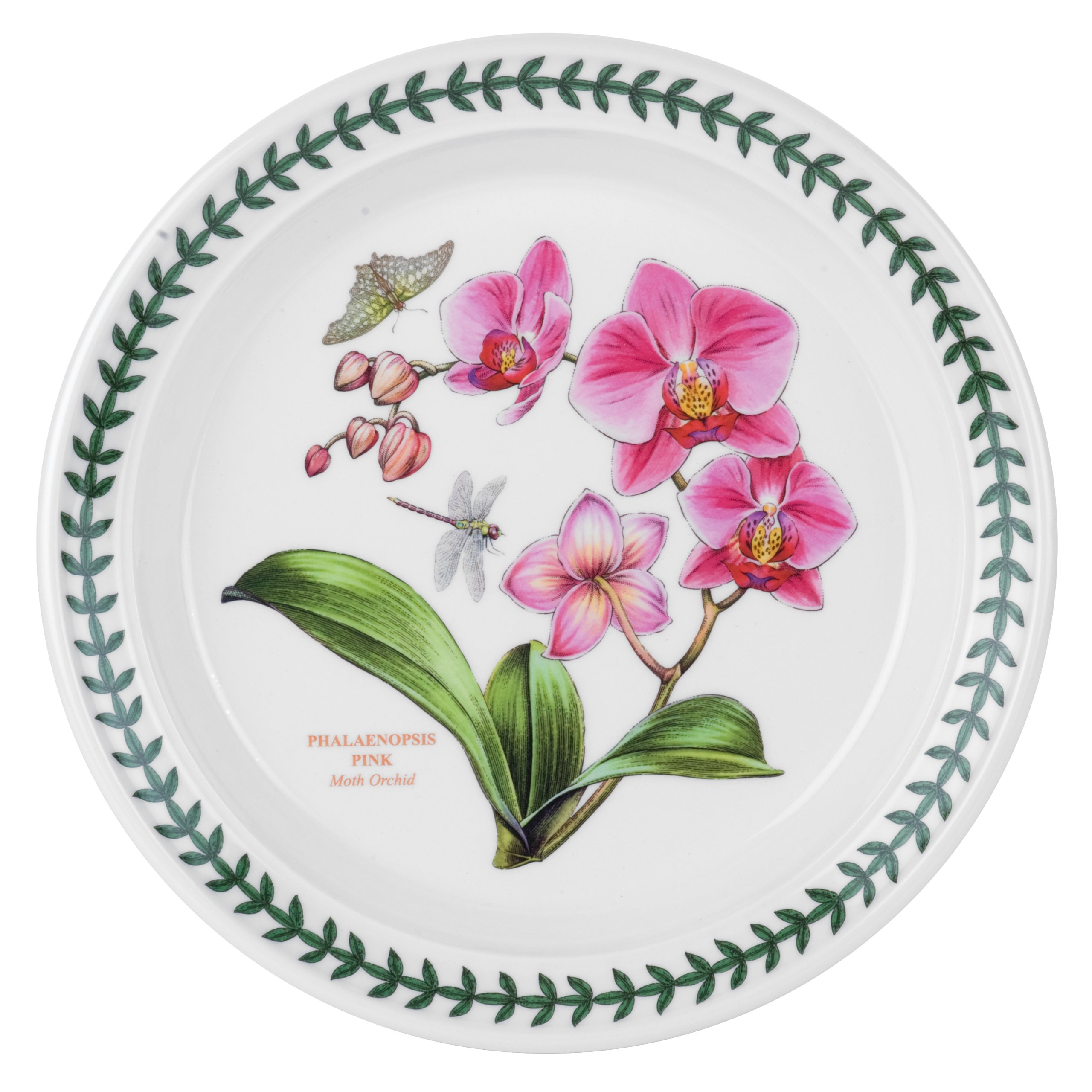 Portmeirion Exotic Botanic Garden Salad Plate with Orchid Motif, Set of 6