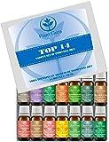Essential Oil Set 14 - 10 ml Pure Therapeutic Grade Includes Frankincense, Lavender, Peppermint, Rosemary, Orange, Tea Tree, Eucalyptus, Grapefruit, Lemon, Lime, Clove, Spearmint, Lemongrass, Cinnamon