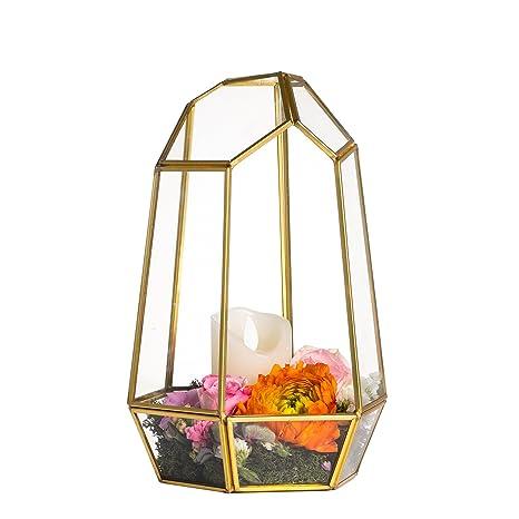 Amazon Com 9 8inches Glass Terrarium Planter Geometric Decor Box