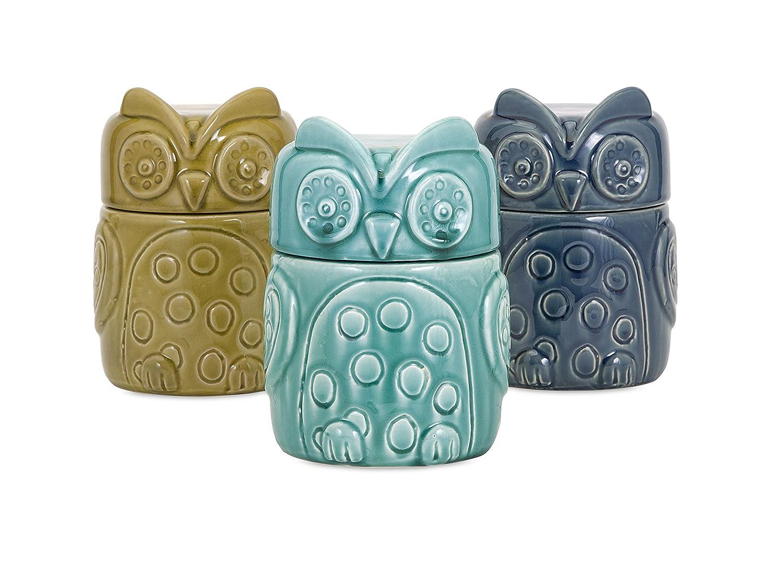 Amazon.com: 3-Pc Bristol Owl Canister Set: Home & Kitchen