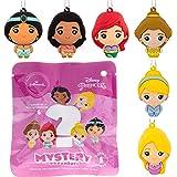 Hallmark Christmas Ornament, Disney Princesses Series 1 Mystery Blind Bag