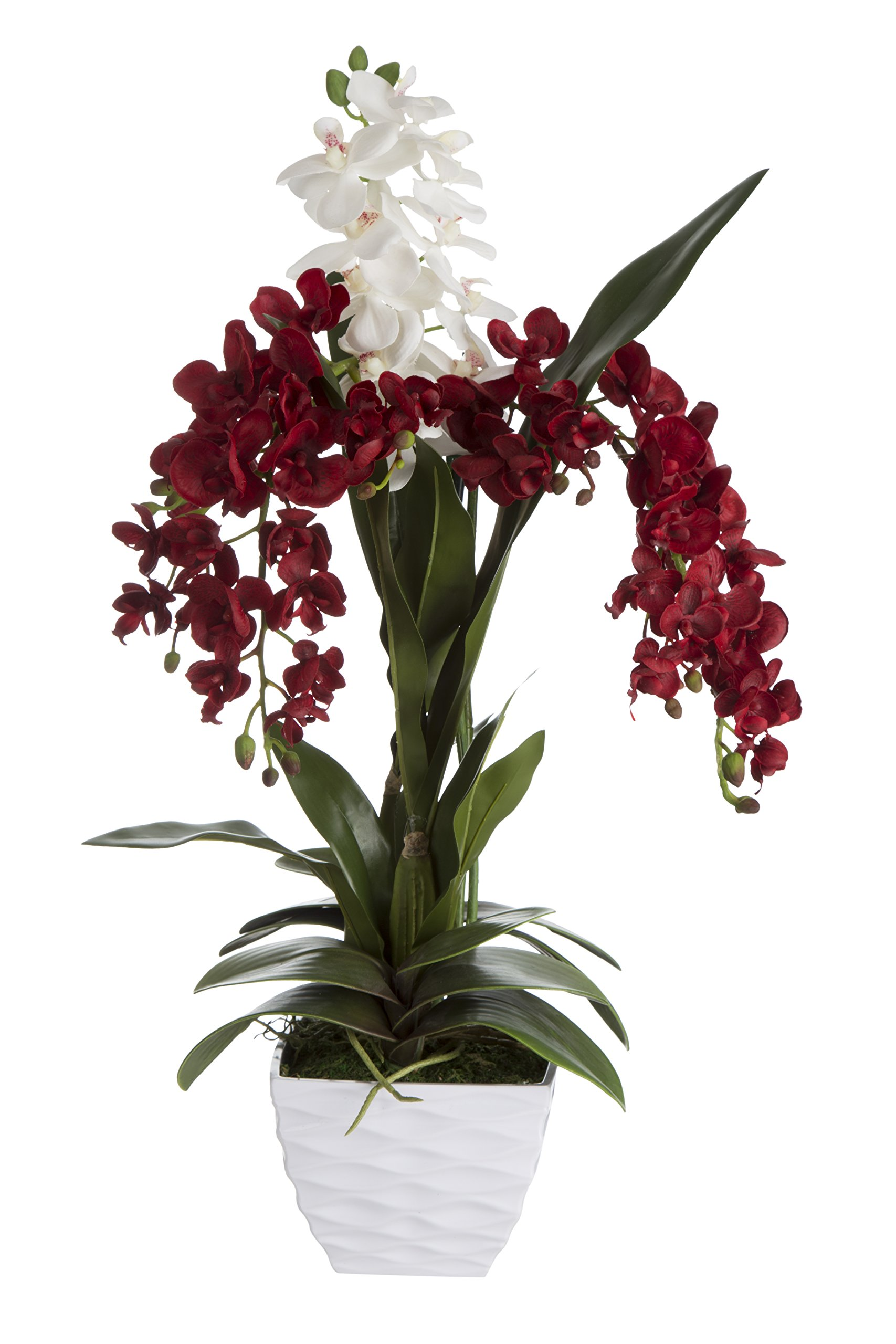 SilkenBloom Artificial Crimson Red and White Silk Orchid Arrangement in White Wave Modern Pot Holiday Gift Decor