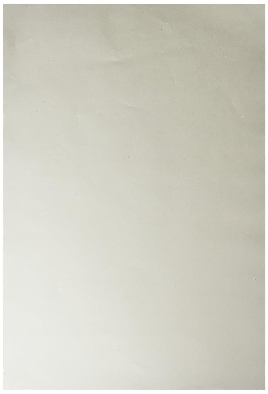 White 11 x 16 Inches 100 Sheets School Smart Finger Paint Paper 60 lb