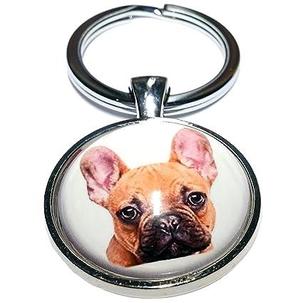 Cameleon-Shop Llavero Metal Perro Bulldog Francés: Amazon.es ...