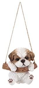 Hanging Shih Tzu Puppy