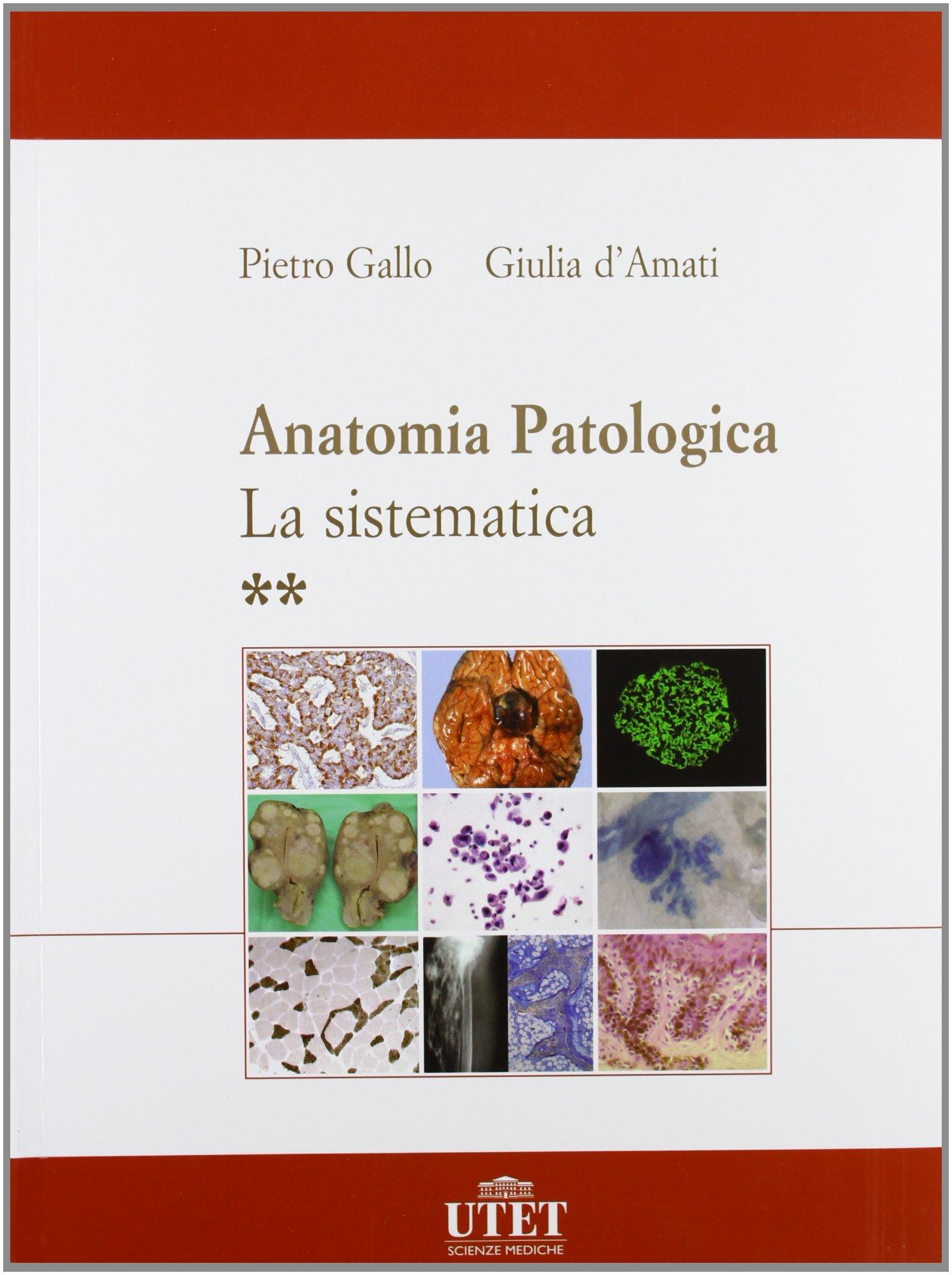 Excelente Anatomía Del Gallo Imágenes - Imágenes de Anatomía Humana ...